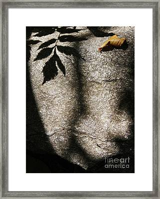 Abstract Nature 4 Framed Print by Jonathan Welch