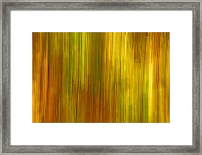 Abstract Nature Background Framed Print by Gry Thunes