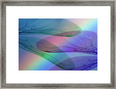 Abstract Of Dragonfly Wings And Rainbow Framed Print by Jaynes Gallery