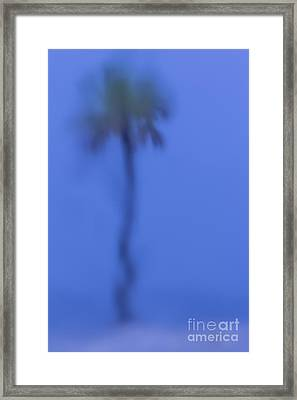 Abstract Palm Framed Print by Marvin Spates