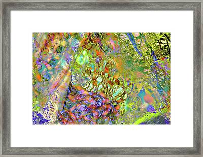 Abstract Polarised Light Micrographs Framed Print by Steve Lowry