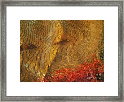 Abstract Shore 2 Framed Print by Jonathan Welch