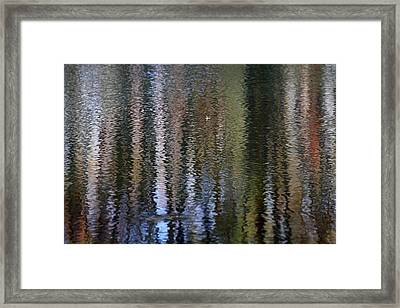 Abstract Tree Reflections Framed Print by Juergen Roth