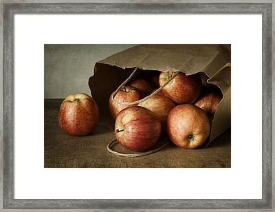 Abundance Framed Print by Amy Weiss