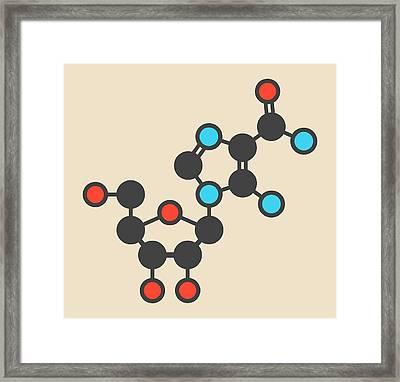 Acadesine Molecule Framed Print by Molekuul
