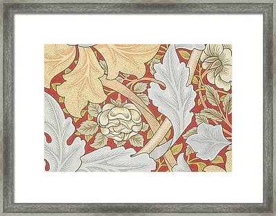 Acanthus Leaves Wild Rose On Crimson Background Framed Print by William Morris