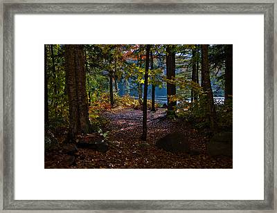 Access To Cary Lake Framed Print by David Patterson