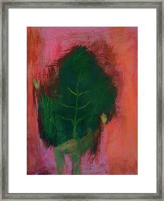 Acclivitous Nature Framed Print by Ana Lara
