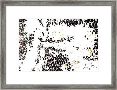Na 7 Take Flight Framed Print by Kika Pierides