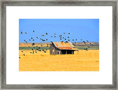 Across The La Plata Framed Print by Jan Amiss Photography