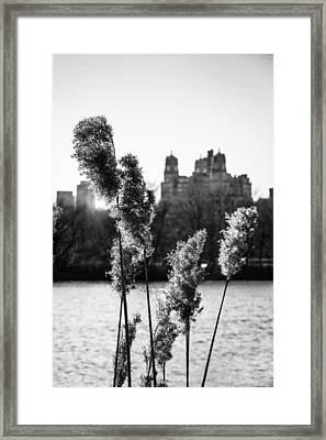 Across The Reservoir Framed Print by Jon Woodhams