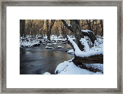 Adamsville Brook Framed Print by Andrew Pacheco