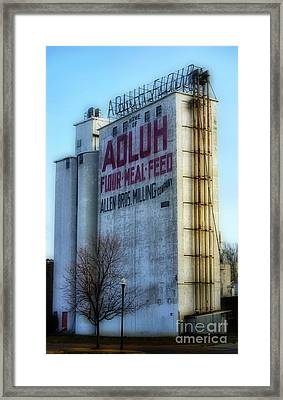 Adluh Flower Mill Framed Print by Skip Willits
