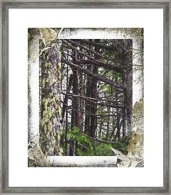 Advice From A Tree - Nature Art Framed Print by Jordan Blackstone