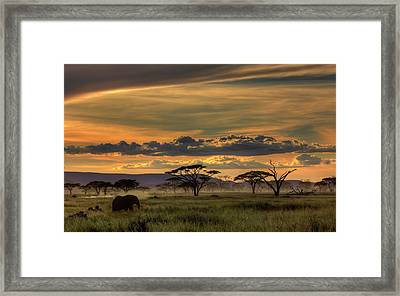 Africa Framed Print by Amnon Eichelberg
