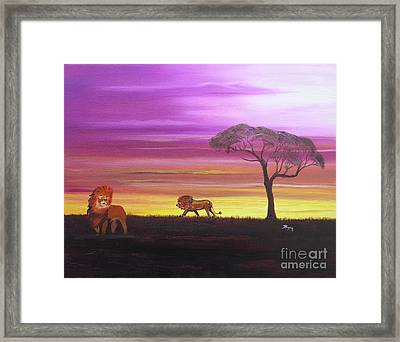African Lions Framed Print by Barbara Hayes