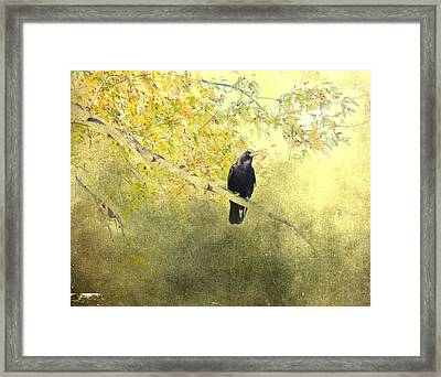 After September Framed Print by Gothicrow Images