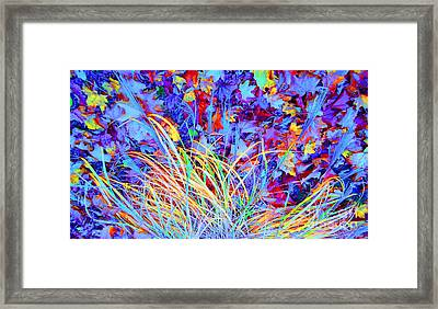 After The Fall Framed Print by Ann Johndro-Collins