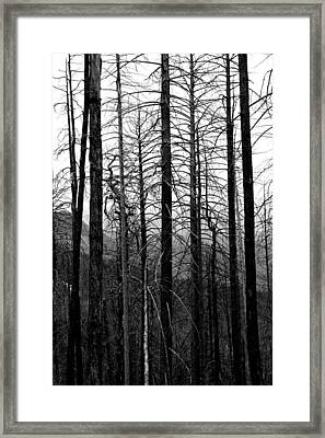 After The Fire Framed Print by Joe Kozlowski