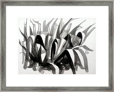 After The Iris Blooms Have Fallen Framed Print by Kip DeVore