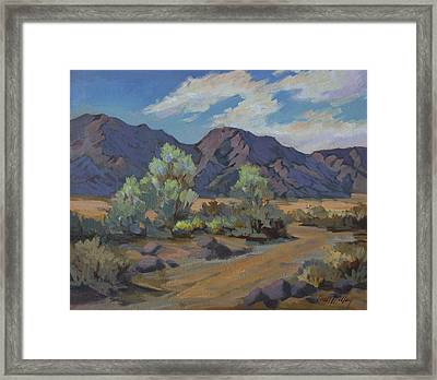 After The Rain 2 Framed Print by Diane McClary