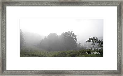 After The Rain Framed Print by Polly Anna