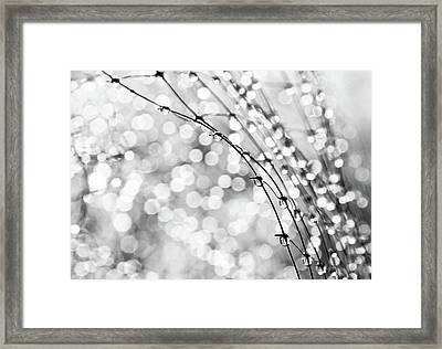After The Rain Framed Print by Theresa Tahara