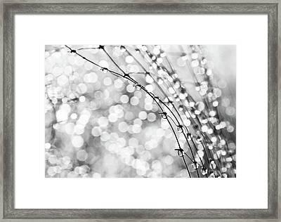 After The Rain Framed Print by Theresa Tahara