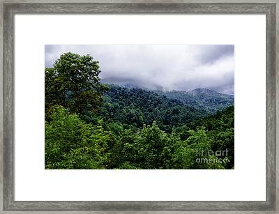 After The Storm Framed Print by Thomas R Fletcher