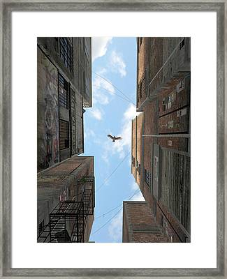 Afternoon Alley Framed Print by Cynthia Decker
