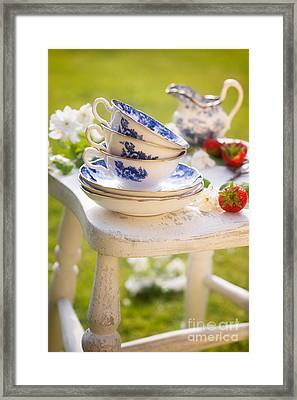 Afternoon Tea Framed Print by Amanda And Christopher Elwell
