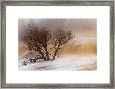 Against The Current Framed Print by Mary Amerman
