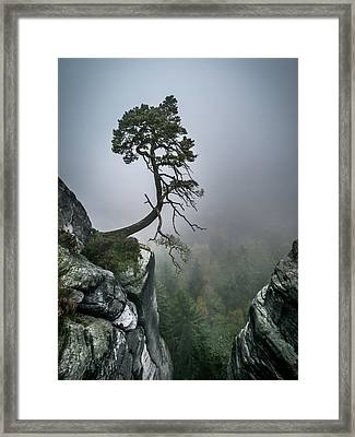 Against The Odds Framed Print by Andreas Wonisch