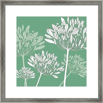 Agapanthus Breeze Framed Print by Sarah Hough