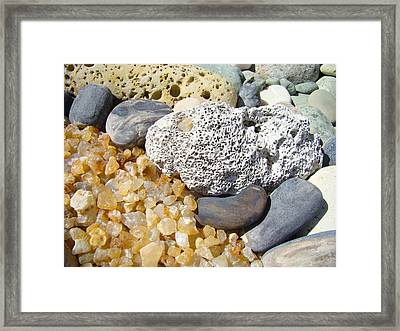 Agate Rock Garden Design Art Prints Coral Petrified Wood Framed Print by Baslee Troutman