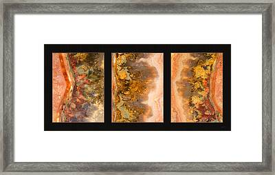 Agate Triptych 2 Framed Print by Leland D Howard