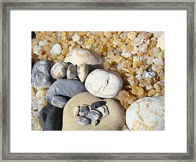 Agates Rocks Art Prints Petrified Wood Fossils Framed Print by Baslee Troutman
