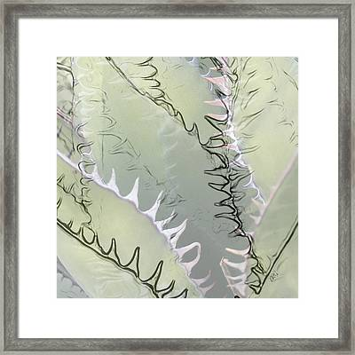 Agave Abstract Framed Print by Ben and Raisa Gertsberg