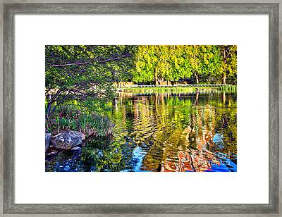 Age Is But A Number Framed Print by Terry Wallace