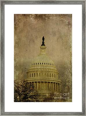 Aged Capitol Dome Framed Print by Terry Rowe