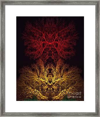 Agni Framed Print by Tim Gainey