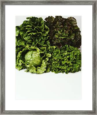 Agriculture - Heads Of Romaine, Red Framed Print by Ed Young