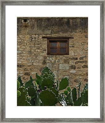 Alamo Window Framed Print by Jemmy Archer