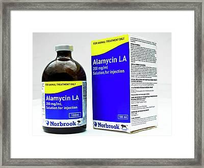 Alamycin Antibiotic Solution Framed Print by Ian Gowland