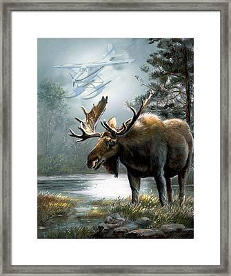 Alaska Moose With Floatplane Framed Print by Regina Femrite