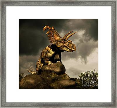Albertaceratops Surveys The Land Framed Print by Philip Brownlow