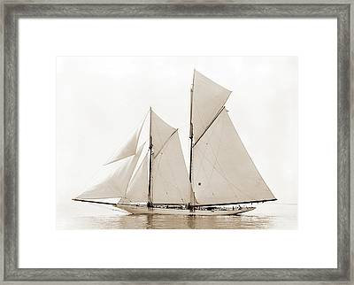 Alcaea, Alcaea Schooner, Commodore Gerry Cup Race Framed Print by Litz Collection