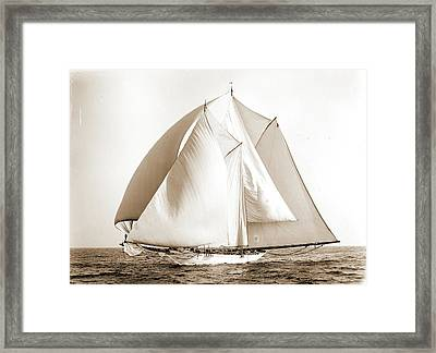 Alcaea, Alcaea Schooner, Yachts Framed Print by Litz Collection