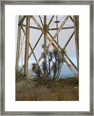 Alcatraz Contrasts Framed Print by Vadim Levin