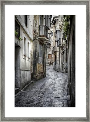Alfileritos Framed Print by Joan Carroll